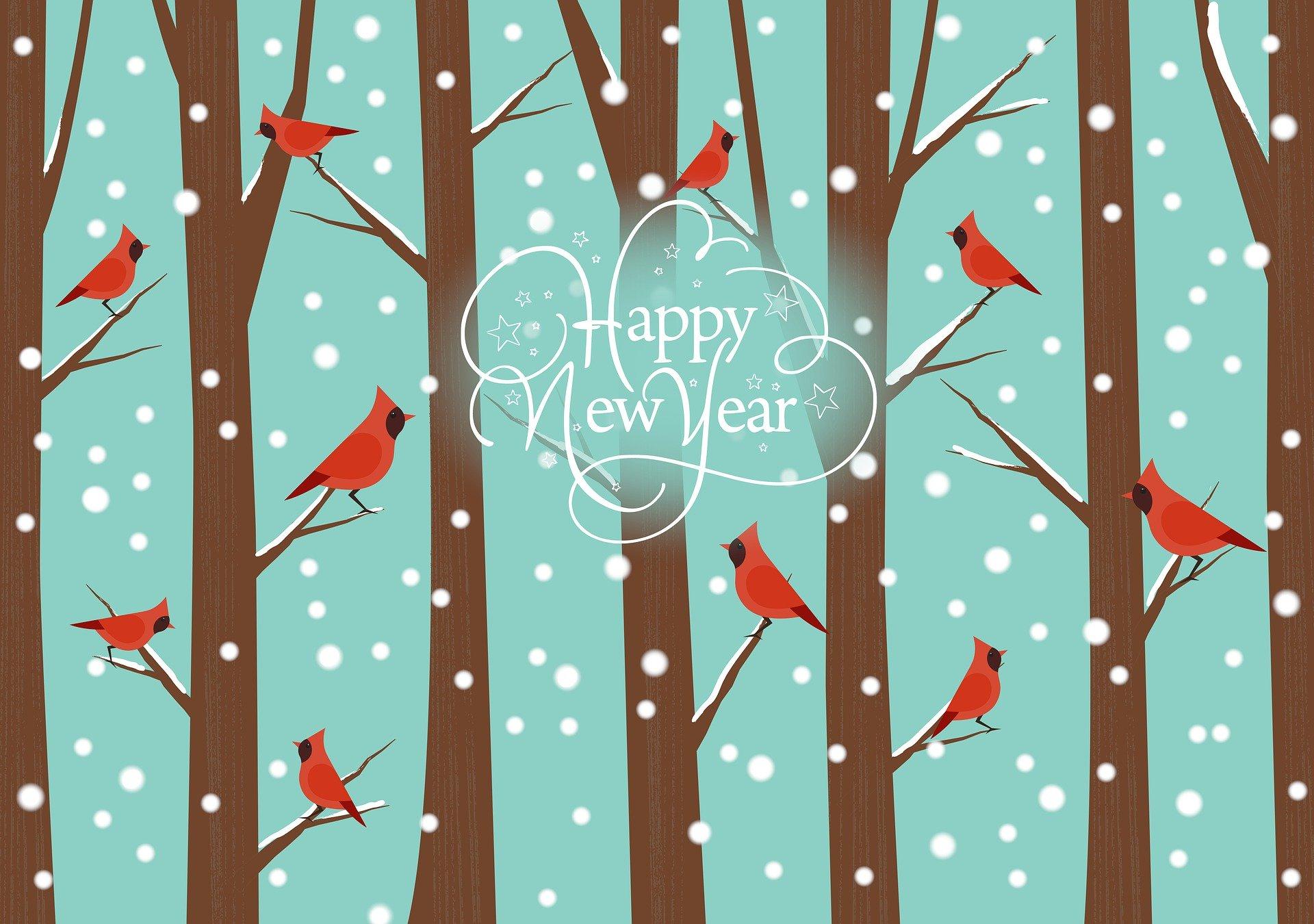 Une nouvelle année commence…
